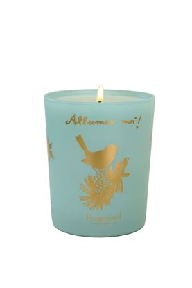 Picture of Allumez-moi Lumanare Scented Candle 200g