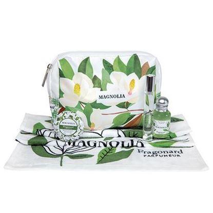 Imagine a Magnolia Gentuta parfumata