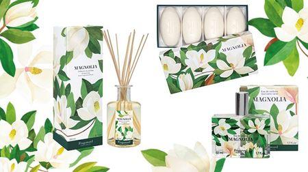 Imagine pentru categorie Gama Magnolia